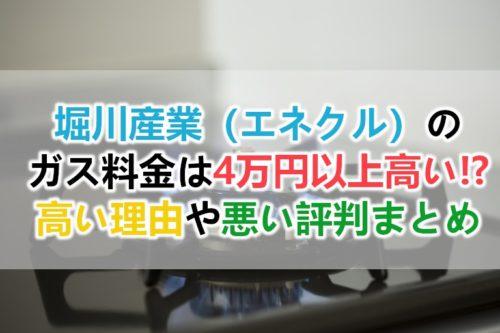 堀川産業(エネクル)のガス料金は高い