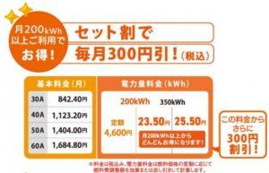 東彩ガスのセット割引