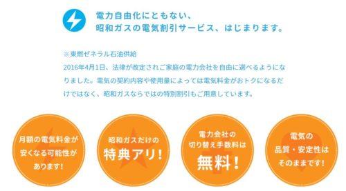 昭和ガスの電気割引