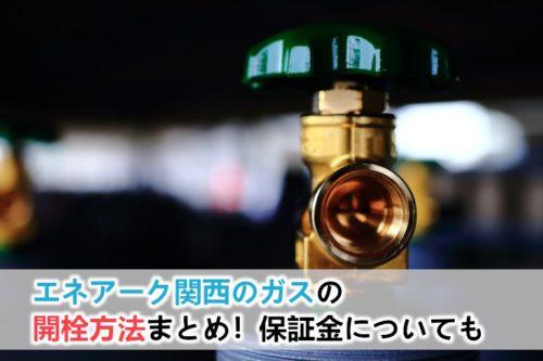 エネアーク関西のガスの開栓