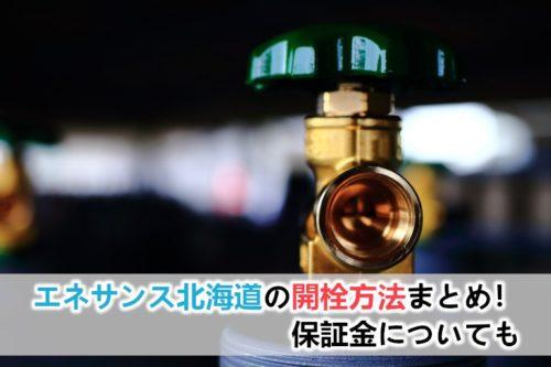 エネサンス北海道のガスの開栓